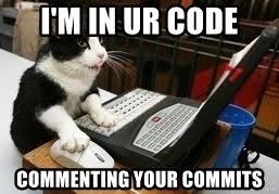 Coding Cat